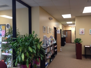 books and pamphlets available at the women's center on a wall rack, artwork on the walls and lots of plants